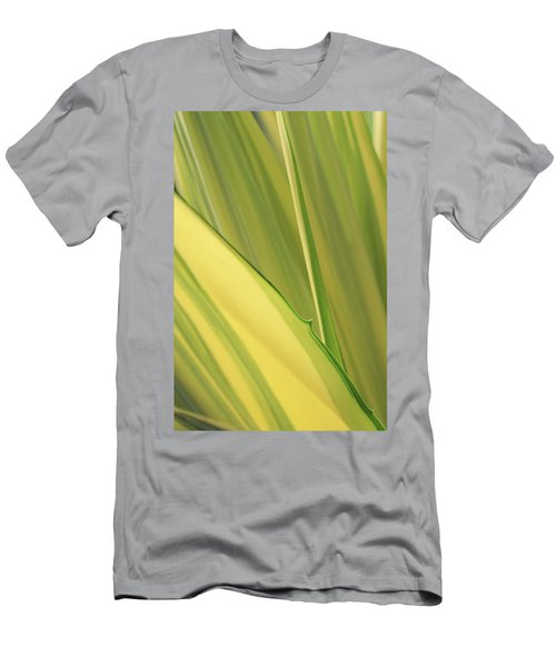 Dreamy Leaves Men's T-Shirt (Athletic Fit)
