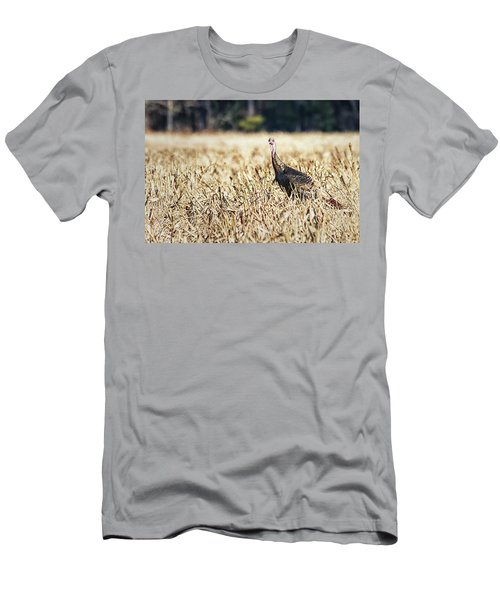 Eastern Wild Turkey Men's T-Shirt (Athletic Fit)