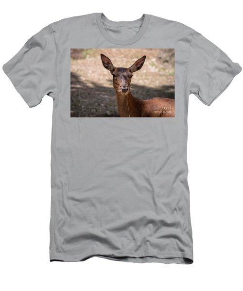 European Roe Deer Men's T-Shirt (Athletic Fit)