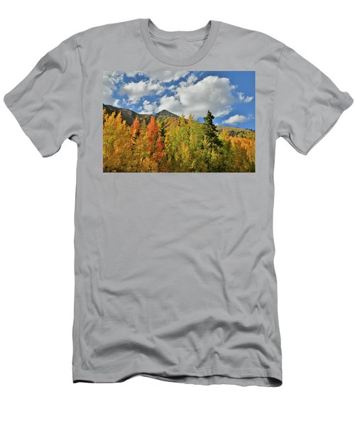 Fall Colored Aspens Bask In Sun At Red Mountain Pass Men's T-Shirt (Athletic Fit)