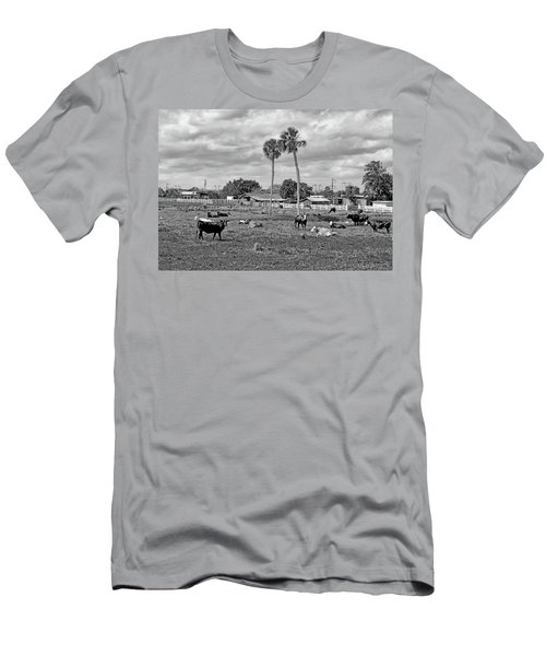Florida Farmscape Men's T-Shirt (Athletic Fit)
