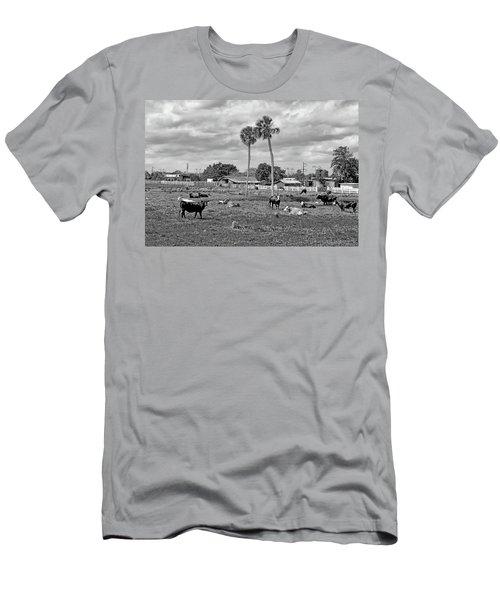 Florida Farmscape Men's T-Shirt (Athletic Fit)