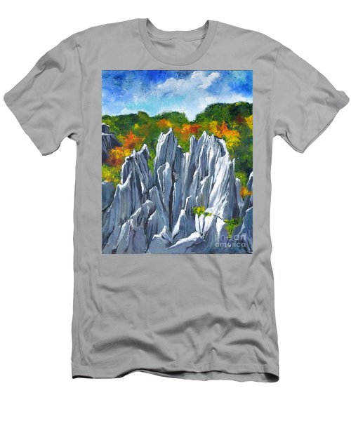 Forest Of Stones Men's T-Shirt (Athletic Fit)