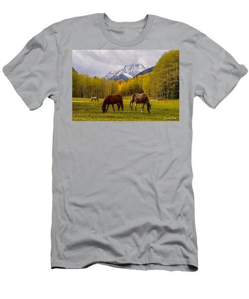 Grazing In Aspen Men's T-Shirt (Athletic Fit)
