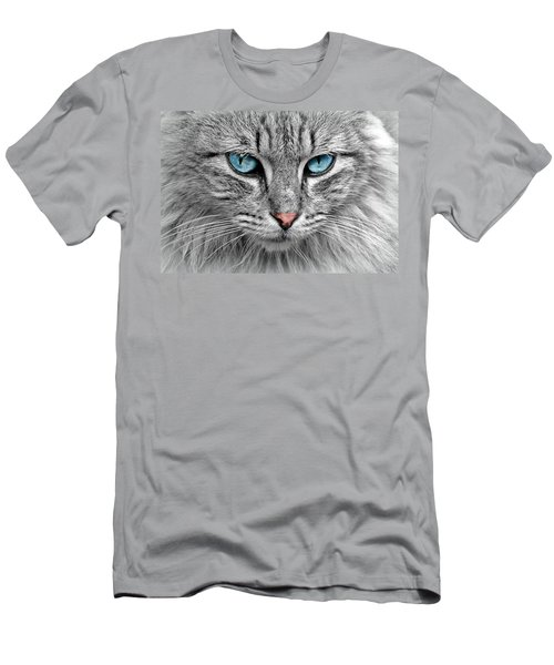 Grey Cat With Blue Eyes Men's T-Shirt (Athletic Fit)