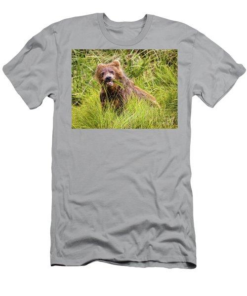 Grizzly Cub Grazing, Alaska Men's T-Shirt (Athletic Fit)