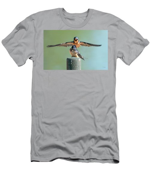 Hey, Babe, Let's Rock N Roll.  Barn Swallows Men's T-Shirt (Athletic Fit)