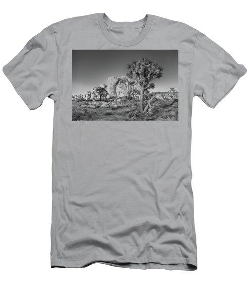 Hidden Valley Rock Men's T-Shirt (Athletic Fit)