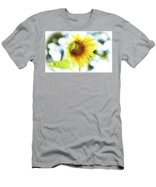 Honey Bees On Sunflower Men's T-Shirt (Athletic Fit)