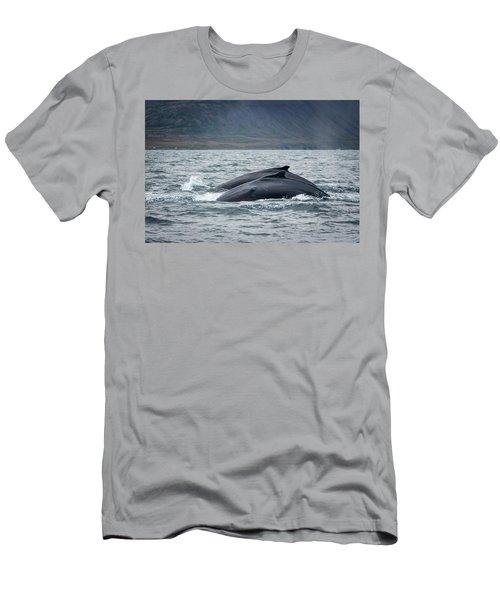 Humpback 7 Men's T-Shirt (Athletic Fit)
