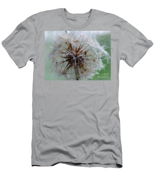 Irish Daisy Men's T-Shirt (Athletic Fit)