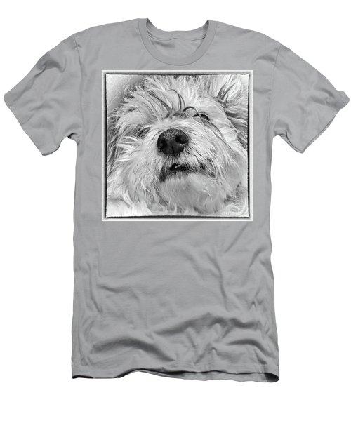 Coton De Tulear Dog Men's T-Shirt (Athletic Fit)