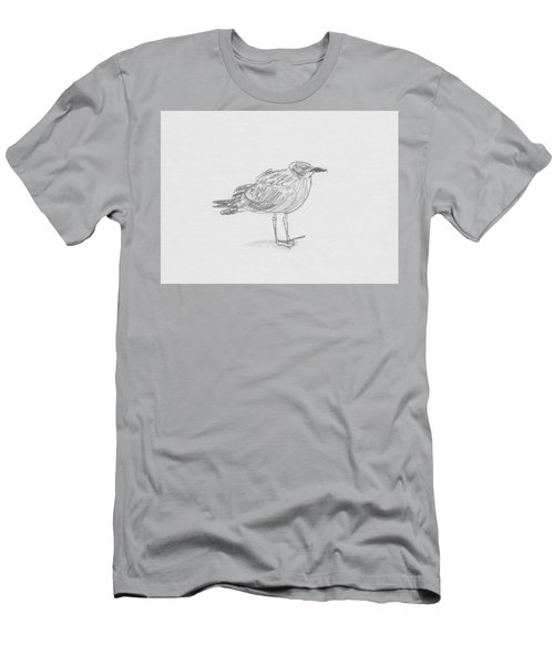 Kelp Gull Men's T-Shirt (Athletic Fit)