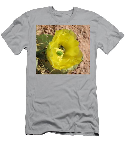 Leaf-cutter Bee Bathing In Gold Men's T-Shirt (Athletic Fit)