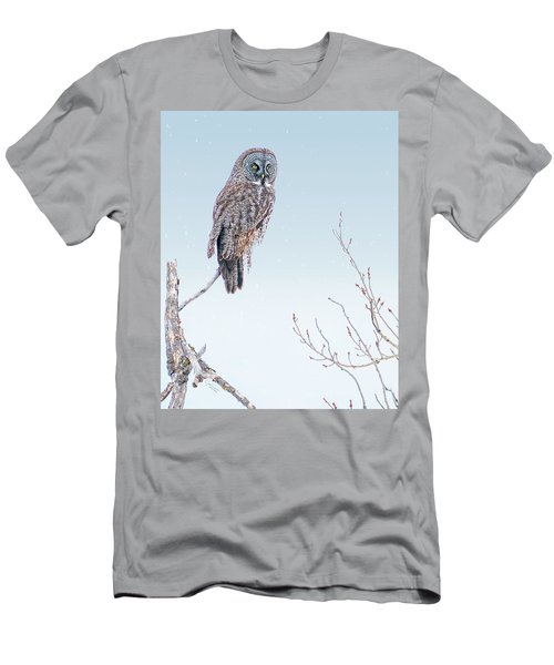 Majestic Great Gray Owl Men's T-Shirt (Athletic Fit)
