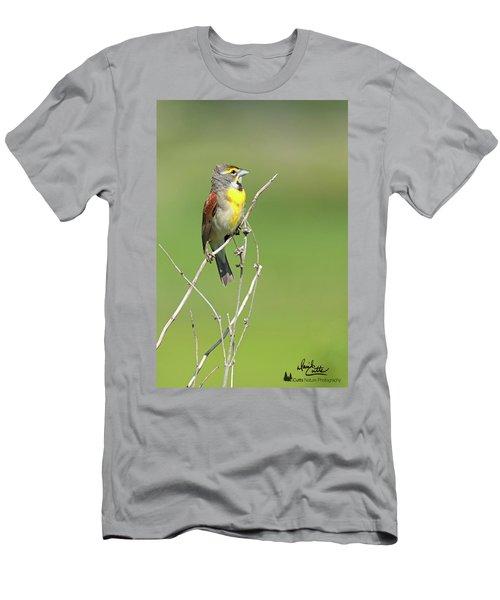 Male Dickcissel Men's T-Shirt (Athletic Fit)