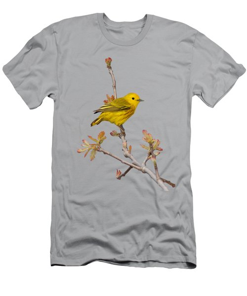 Male Yellow Warbler In Spring Men's T-Shirt (Athletic Fit)