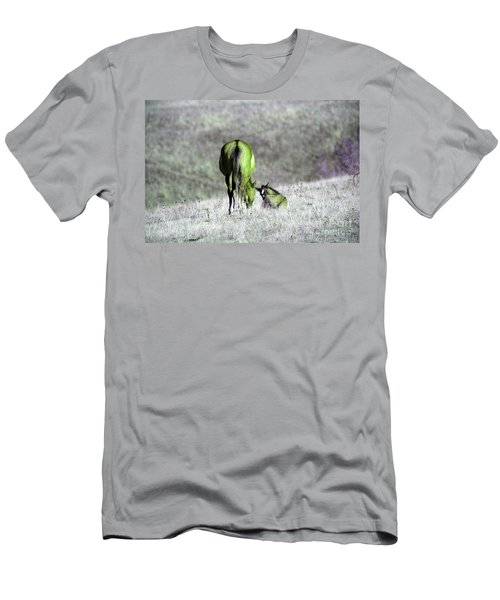 Mare And Lazy Colt Men's T-Shirt (Athletic Fit)