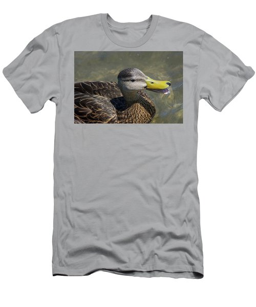 Mottled Duck Telling Me All About It Men's T-Shirt (Athletic Fit)