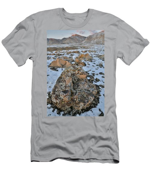 Ornate Boulder Beneath The Book Cliffs Men's T-Shirt (Athletic Fit)