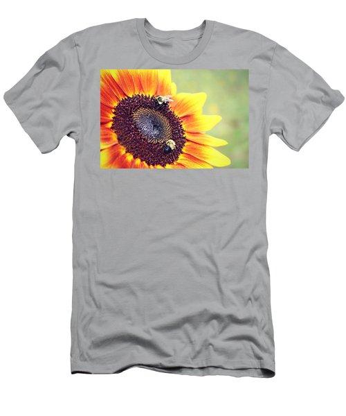 Painted Sun Men's T-Shirt (Athletic Fit)