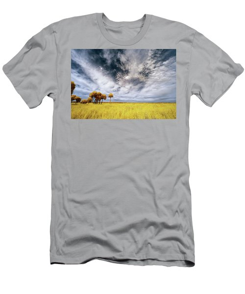 Palm Trees In Myakka Park Men's T-Shirt (Athletic Fit)