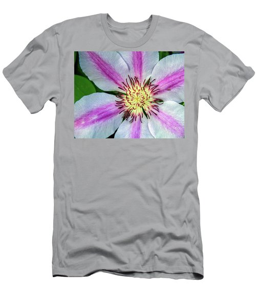 Pink Striped Clematis Close Up Men's T-Shirt (Athletic Fit)