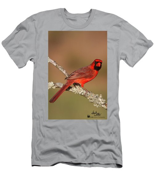 Red And Radiant Men's T-Shirt (Athletic Fit)