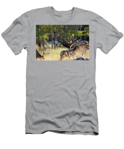 Rocky Mountain Bull Elk Bugeling Men's T-Shirt (Athletic Fit)