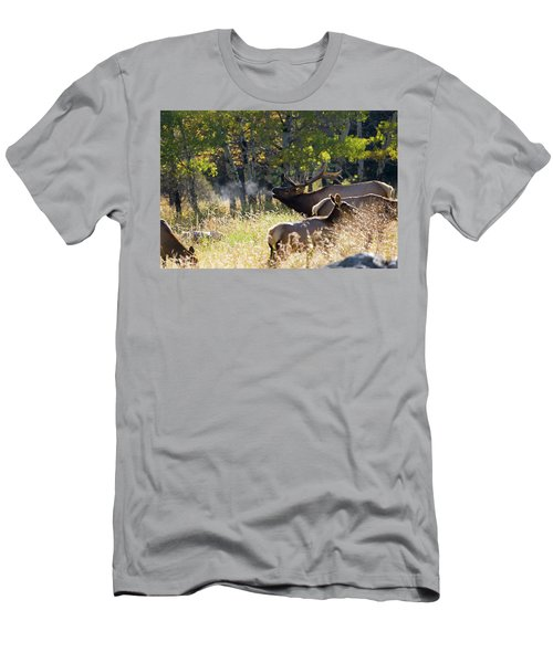 Rocky Mountain Bull Elk Bugeling Men's T-Shirt (Athletic Fit)