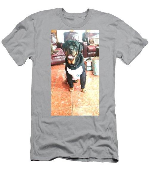 Rottie Men's T-Shirt (Athletic Fit)