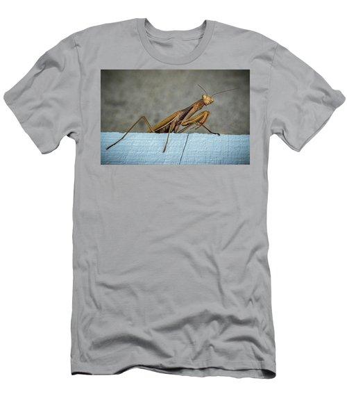 Shingle Mantis Men's T-Shirt (Athletic Fit)