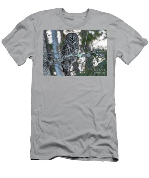 Strix Nebulosa.. Men's T-Shirt (Athletic Fit)
