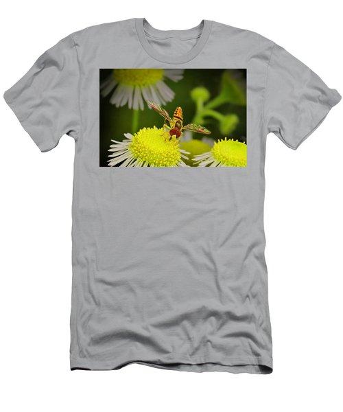 Sugar Bee Wings Men's T-Shirt (Athletic Fit)