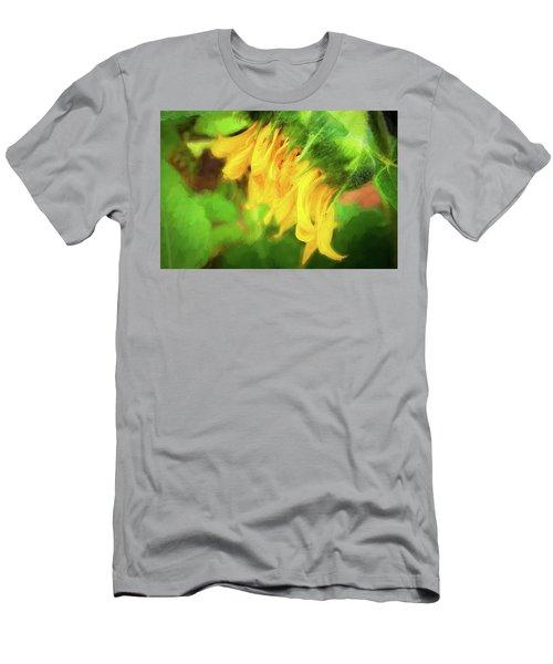 Sunflowers  Helianthus 031 Men's T-Shirt (Athletic Fit)
