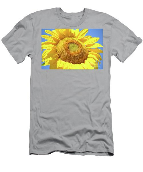 Sunny Sunflower  Men's T-Shirt (Athletic Fit)