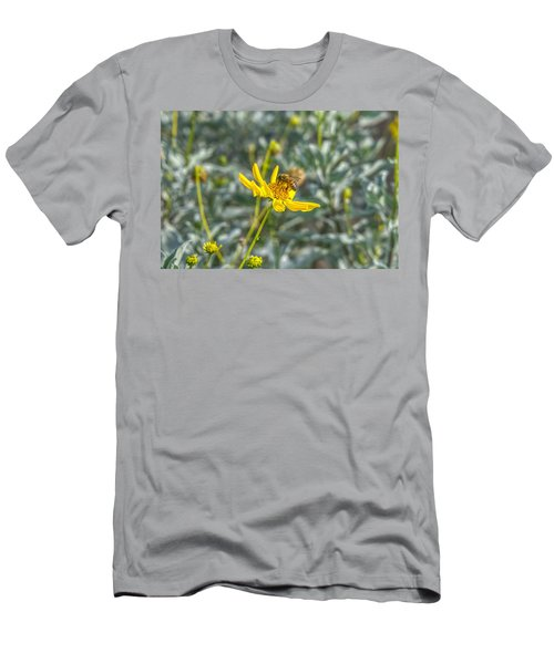The Bee The Flower Men's T-Shirt (Athletic Fit)