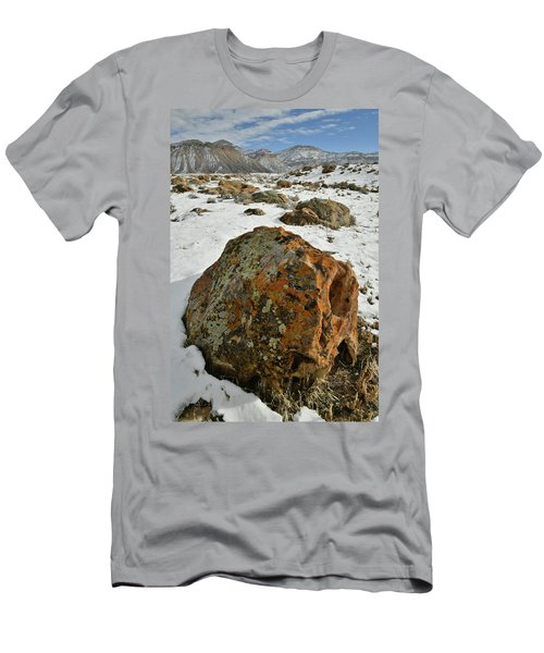 The Book Cliff's Colorful Boulders Men's T-Shirt (Athletic Fit)
