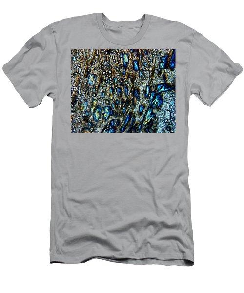 The Leveler Men's T-Shirt (Athletic Fit)
