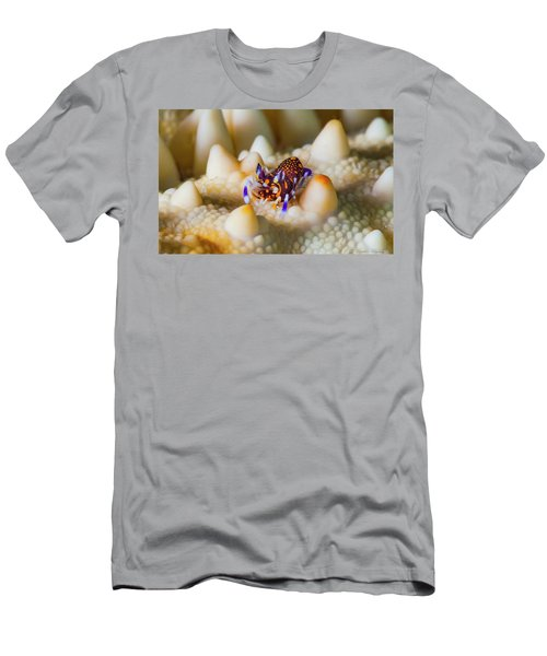 Tiny Big World Men's T-Shirt (Athletic Fit)