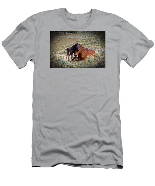 Wild Black New Born Foal And Mare Men's T-Shirt (Athletic Fit)