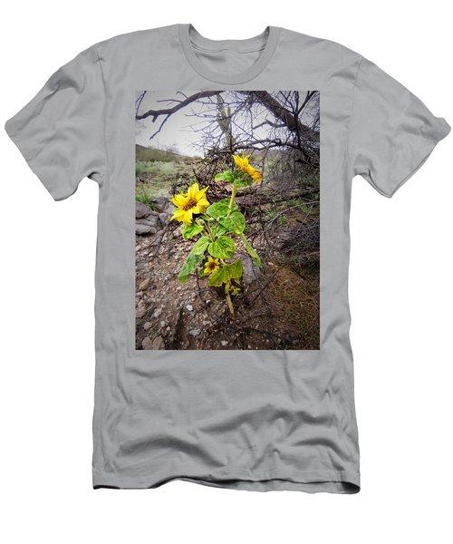 Wild Desert Sunflower Men's T-Shirt (Athletic Fit)