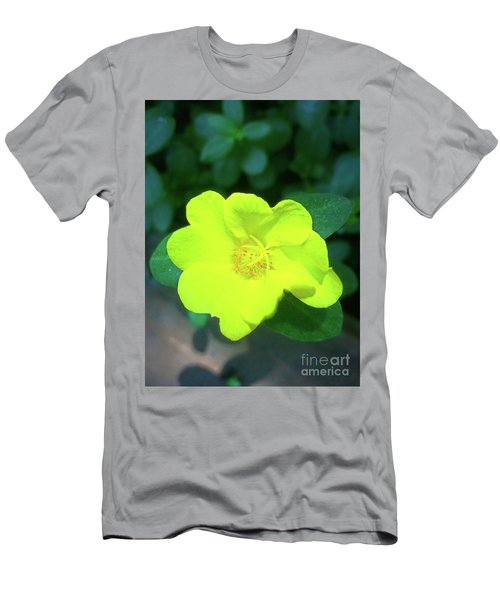 Yellow Hypericum - St Johns Wort Men's T-Shirt (Athletic Fit)