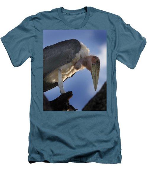Maribou Stork Men's T-Shirt (Athletic Fit)