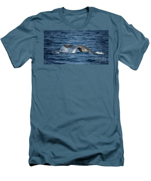 Whale Fluke In Dana Point Men's T-Shirt (Slim Fit)