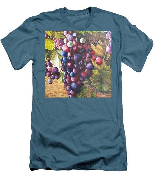 Wine Grapes On A Vine Men's T-Shirt (Athletic Fit)