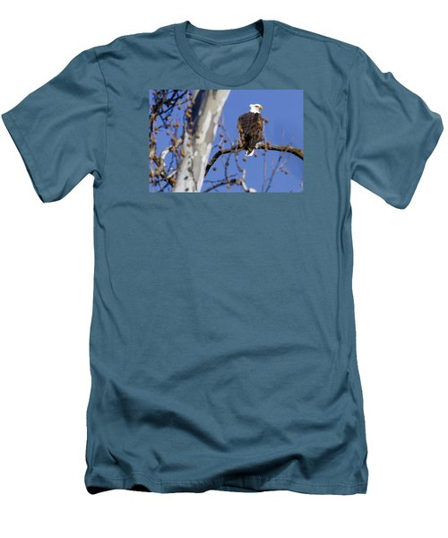 Men's T-Shirt (Slim Fit) featuring the photograph Bald Eagle 2 by David Lester