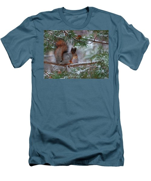 Eurasian Red Squirrel Men's T-Shirt (Slim Fit) by Jouko Lehto