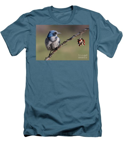 Florida Scrub Jay Men's T-Shirt (Slim Fit) by Meg Rousher