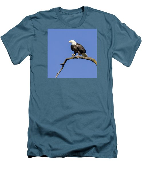 King Of The Sky Men's T-Shirt (Slim Fit) by David Lester
